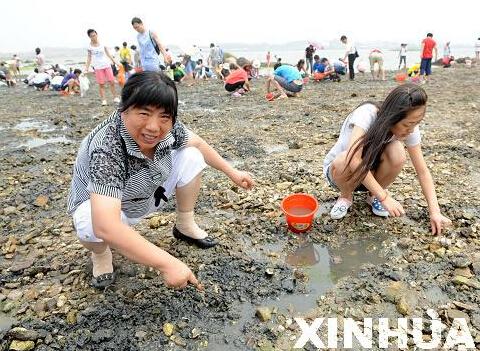 红岛蛤蜊节2