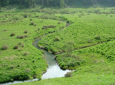 高山湿地   周长庆摄