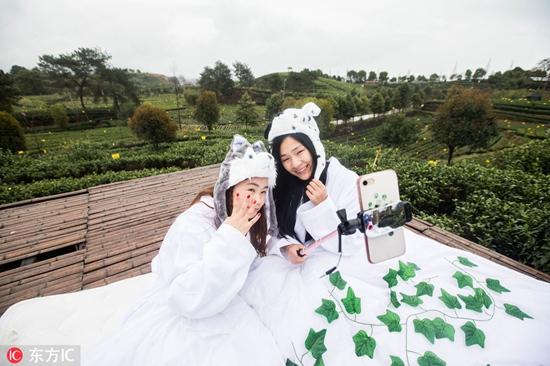 直接睡在大自然里也是一种住宿体验。   马女士今年十一带着孩子去上海玩了几天,前几天住在了香格里拉大酒店,每天拉开窗帘便能在几十层高的套房里品着咖啡俯瞰外滩美景,最后两天又去了上海周边的七宝古镇,选择了一家精品民宿,江南水乡风格的老宅子也别有味道,现在不能老住高档酒店,有时候住民宿更能体验当地的风情!马女士告诉记者。   40年来,黄山景区接待已由3家简单招待所发展成6家四星级酒店,全国目前也已经有40多家国际酒店管理集团70多个品牌广泛入驻,各类住宿机构多达45.