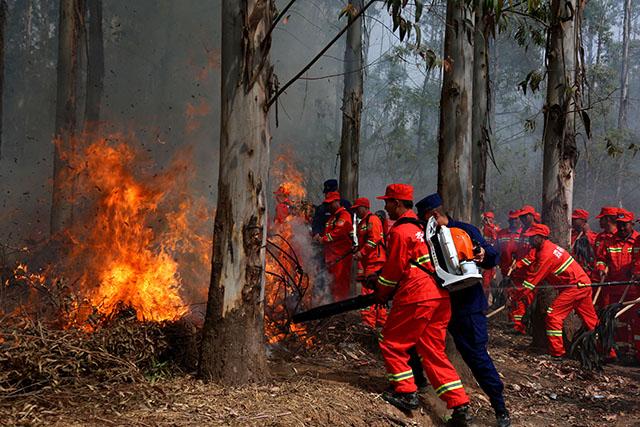 """全国""""两会""""临近 森林消防员在行动图片"""
