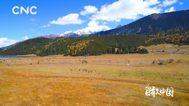 瞰中国 最·西藏 醉·西藏