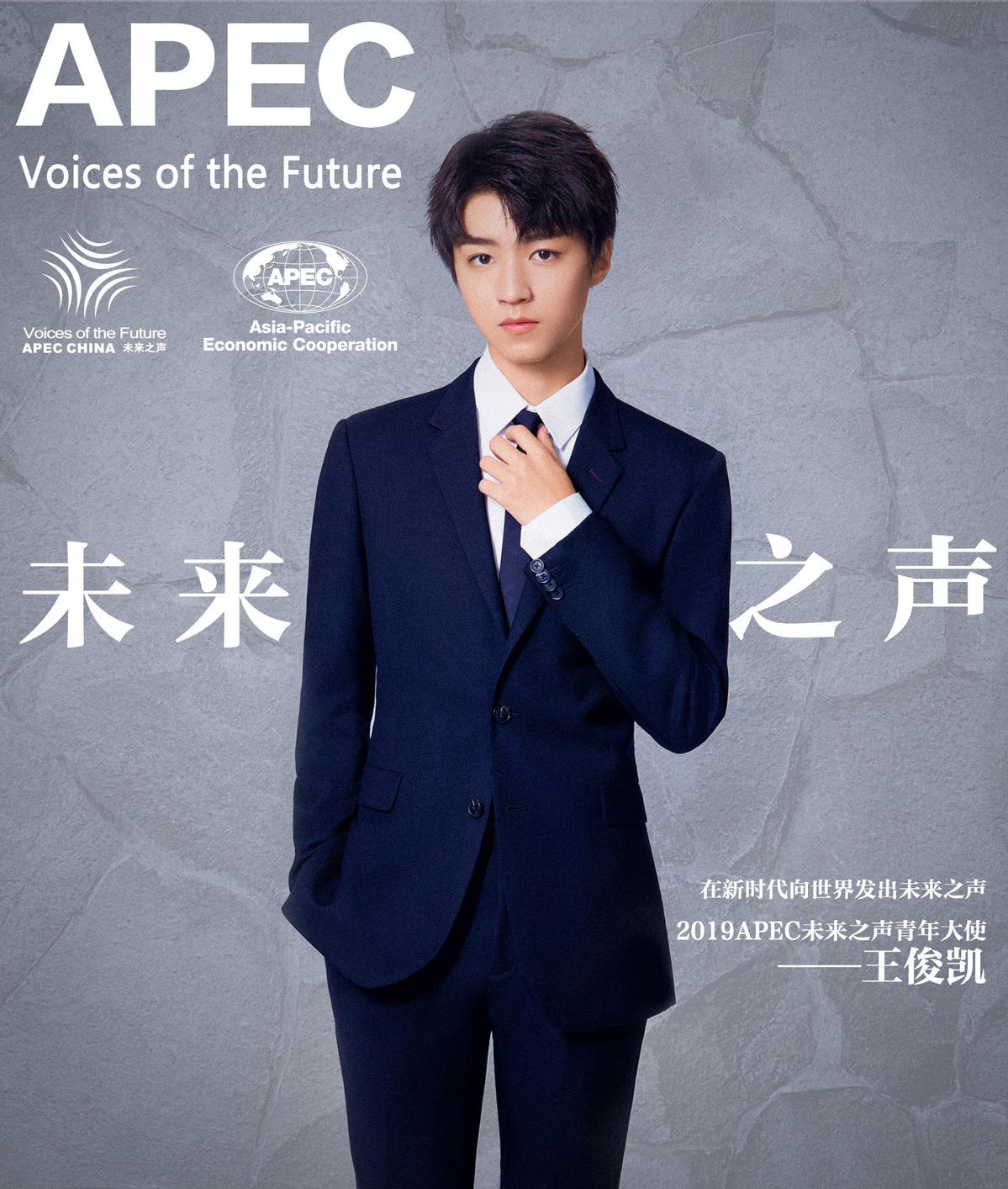 王俊凯任2019年apec未来之声青年大使