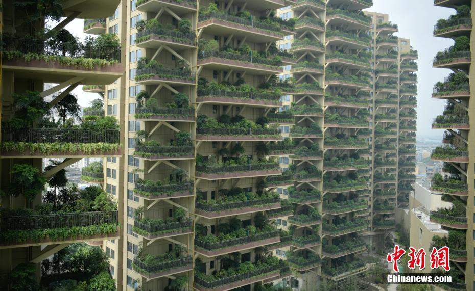 第四代住房——城市森林花园