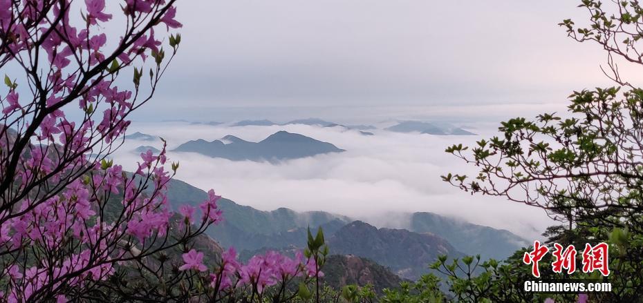 安徽黄山云海缥缈如丹青画卷