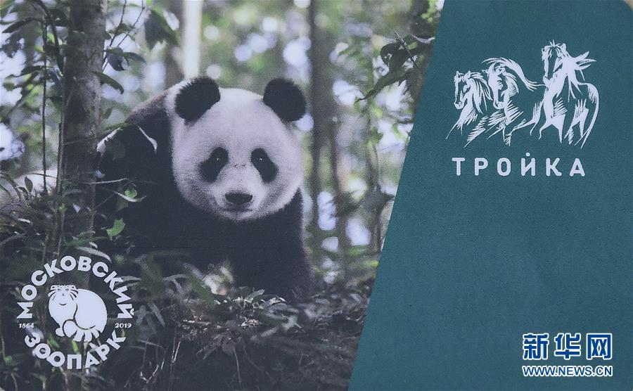 (国际)(4)莫斯科地铁发行大熊猫交通卡