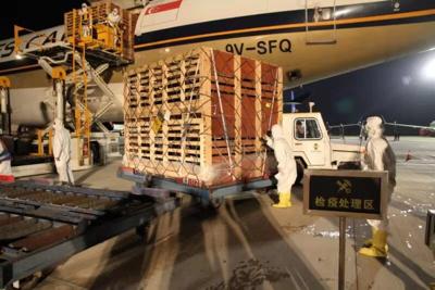 宁夏首次进口900余只澳大利亚种