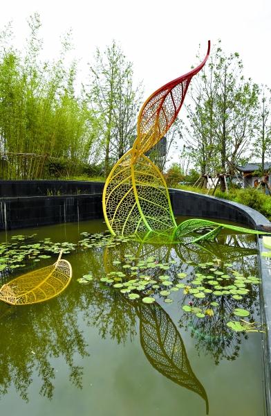 上海园中的雨水花园