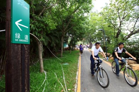"""(图为市民们骑着自行车、穿行在""""绿道""""上。——王小可 摄)"""