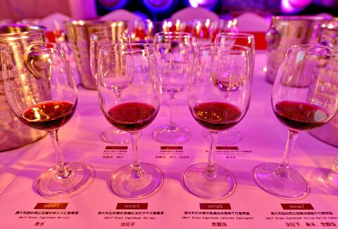 品酒会上的来自澳大利亚纷赋酒庄鹰标系列产品-鞠传江摄影