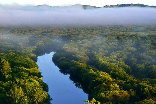 清晨的草原湿地被薄雾笼罩-鞠传江摄影