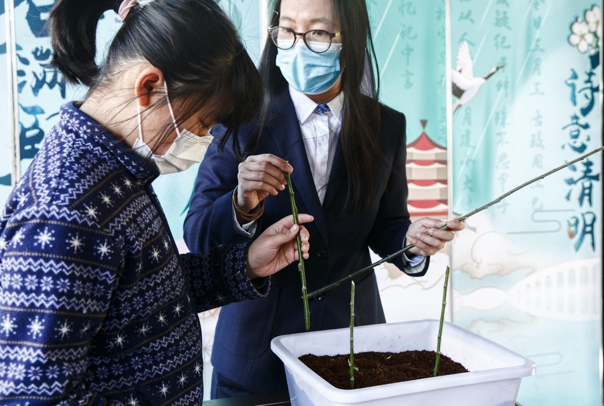 清明假期颐和园举办传统文化体验活动