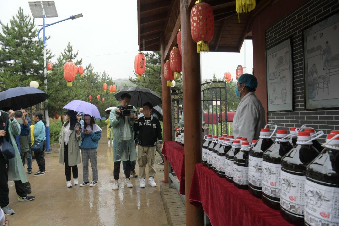 点赞新宁夏丨隆德县李士村:农户变股东 土法展新风