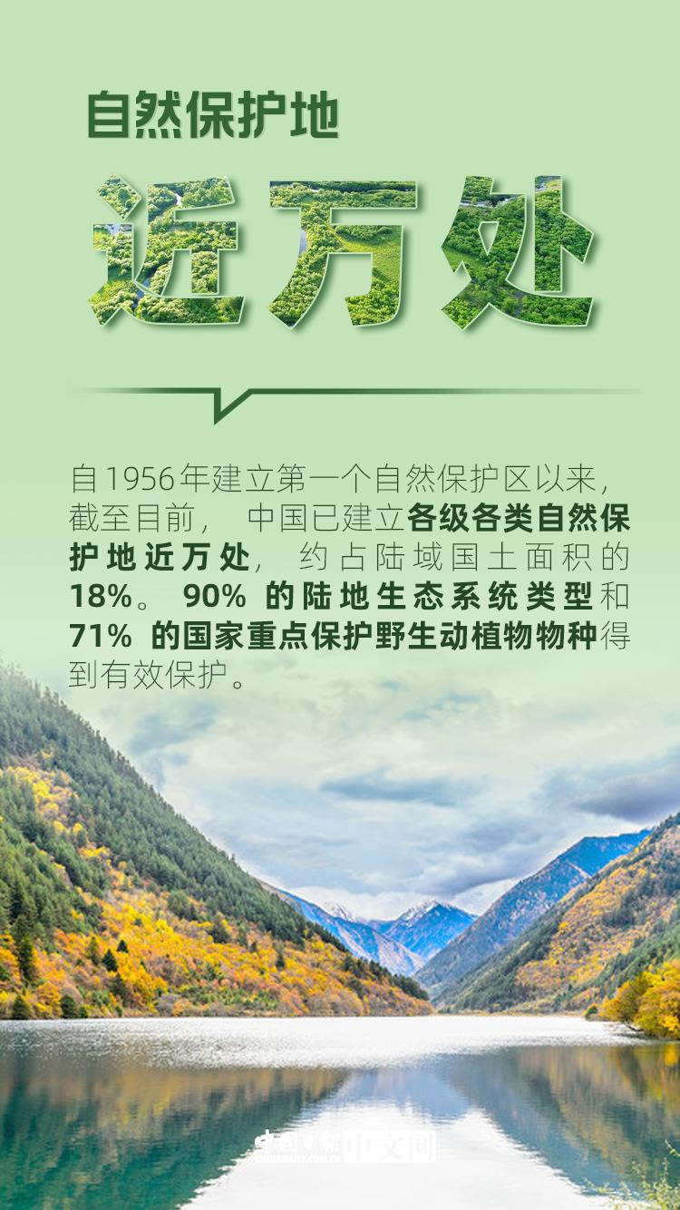 我们的共同家园|保护生物多样性,中国这样做